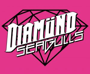 Logo Diamond Seagulls pink