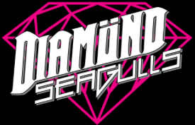 Diamond Seagulls – Glam Rock Band