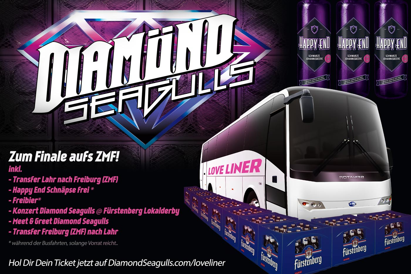 Diamond Seagulls Bus Ticket Tour ZMF